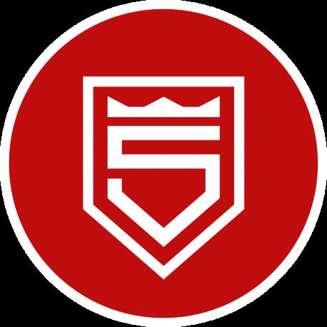 Sportfreunde Siegen – Tradition seit 1899